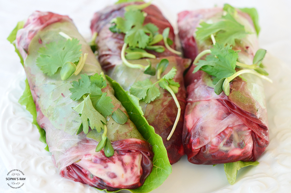 Spring rolls with beetroot, lime- and ginger dressing, ricotta cheese